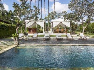 Spacious Villa with Internet Access and A/C - Sayan vacation rentals