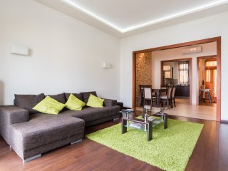 Winston Wolf's solution with Panorama in Budapest - Budapest vacation rentals