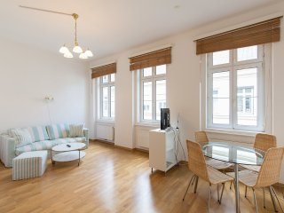 city apartment in historic center. 2 bedrooms - Vienna vacation rentals
