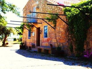 Monte da Fonte Santa de São Luís-Casa de Campo - Castelo Branco vacation rentals