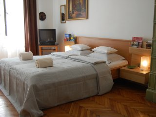 Painter  Dabuberiver view apartment , WIFI and AC - Budapest vacation rentals
