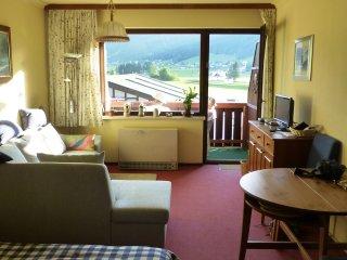 Wonderful Gosau Studio rental with Internet Access - Gosau vacation rentals