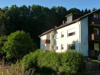 Rhön Bergblick Ferienwohnung Tann - Tann vacation rentals