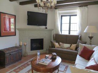 Casa de la Pintora - San Miguel de Allende vacation rentals