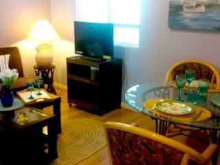 2BR/1BA  Guest Suite in Carsbad. Walk to the ocean - Carlsbad vacation rentals