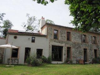 Charmant moulin écologiquement rénové proche Loire - Le Fuilet vacation rentals