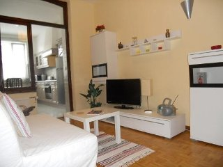 Appart 75m2- 1chmb+1salon+sdd+terrase.Tous comfort - Brussels vacation rentals