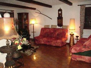 Villa provençale proche Cannes - La Roquette-sur-Siagne vacation rentals