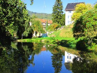 Apartment Maison Bellevue, wifi, parking, train - Munster vacation rentals