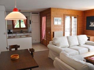 Mila 3 - 3.5 pièces - Champéry vacation rentals