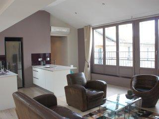 Appartement de standing centre ville - Bordeaux vacation rentals