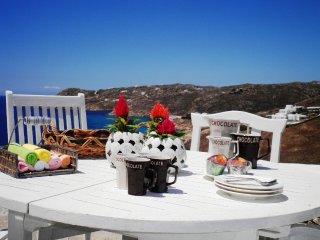 An Amazing Myconian Villa in Elia Beach - Elia Beach vacation rentals