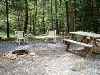Peaceful Haven-31 acres close to Trough Creek Park - Huntingdon vacation rentals
