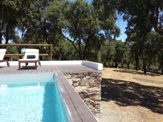 Casa dos Galegos - old barn with private pool - Marvao vacation rentals