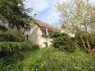 villa sur chanteloup les vignes - Chanteloup-les-Vignes vacation rentals