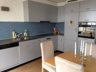 Perfect Condo with Internet Access and Wireless Internet - Zurich vacation rentals