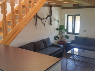 Beautiful 1 bedroom Vacation Rental in Borovany - Borovany vacation rentals
