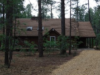 Woodsy large cabin in the tall pines - Pinetop vacation rentals
