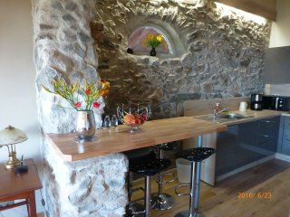 Bel appartement de charme 50 m2 avec vue panoramic - Lugrin vacation rentals