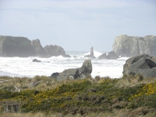 Comfortable House with Internet Access and Television - Bandon vacation rentals