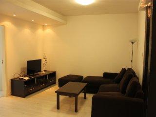 New/Bright nd Cozy 1bdr/1lvr 65sqm apt at Zhenping - Shanghai vacation rentals