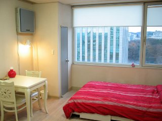 Entire flat, Palace view in City center - Muju-gun vacation rentals