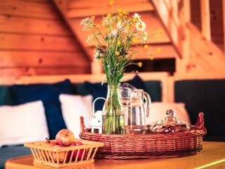 Comfy Chalet Deer WILI HUNTER - Donovaly vacation rentals