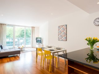 Beautiful 1BR Flat, terrace view Battersea Park - London vacation rentals