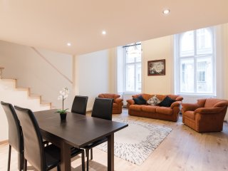 Winston Wolf' solution for main center in Budapest - Budapest vacation rentals