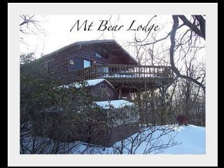 Mt Bear - Lake Harmony vacation rentals