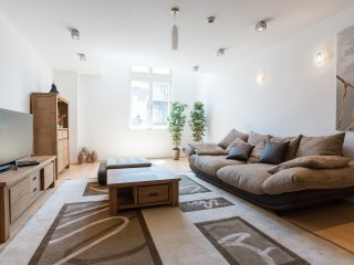 Mr. Wolf's luxory solution in central Budapest - Budapest vacation rentals