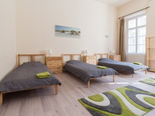 Mr.Wolf'budget solution/big groups/ BP main center - Budapest vacation rentals