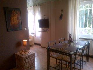 Cozy Dambach Studio rental with Internet Access - Dambach vacation rentals
