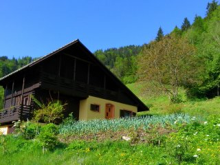 2 bedroom Cottage with Television in Mozirje - Mozirje vacation rentals