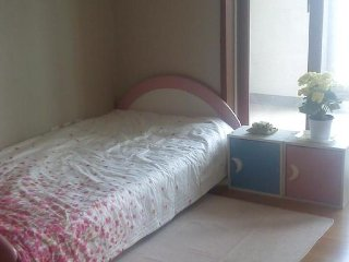 Close to Everland themepark, two rooms in a apartment - Yongin vacation rentals