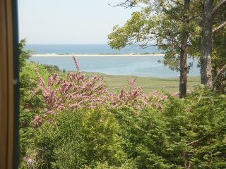 Executive modern oceanview hilltop home - Martha's Vineyard vacation rentals