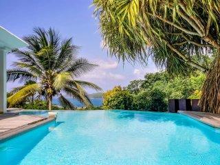 Villa standing, piscine, jardin tropical, vue mer - La Trinite vacation rentals