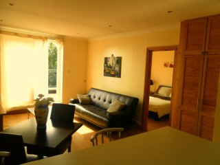 Lovely one bedroom flat in NW3 - London vacation rentals