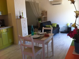 Grand Studio Climatisé - BASTIA - Furiani vacation rentals