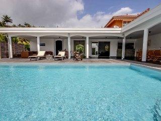 Villa de grand standing, piscine, jacuzzi,fitness - Le Francois vacation rentals