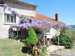 Gite 120m2 en pleine nature à 10 minutes de Cluny - Cluny vacation rentals