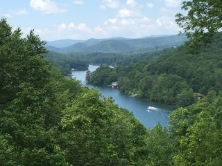 One of kind home overlooking Lake Summit+boathouse - Saluda vacation rentals