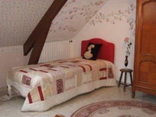 A 20km environ des châteaux de Langeais, Chinon et - La Chapelle-sur-Loire vacation rentals