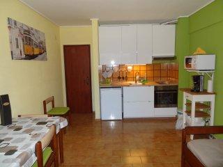 Beach apartment...T1 with swimming pool(summer) - Costa da Caparica vacation rentals
