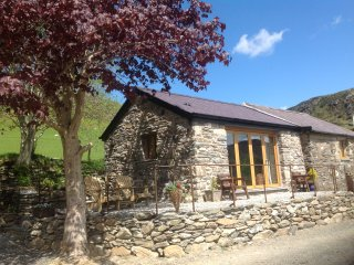 Ty Felin Self-catering cottage for 2 people - Beddgelert vacation rentals