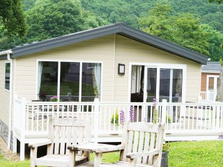 New Quay Lodge  - Woodlands Holiday Park - 413597 - New Quay vacation rentals