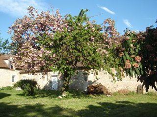 7 bedroom House with Internet Access in Montargis - Montargis vacation rentals