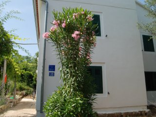 Villa Miketa- detached house / private garden - Lukoran vacation rentals