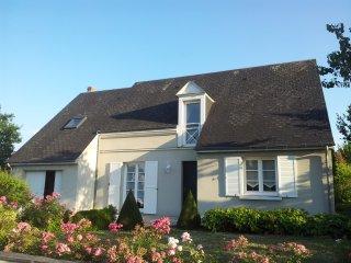 Grande maison 10min de Tours/Chateaux de la Loire - Saint Avertin vacation rentals