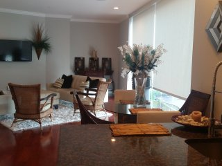 Luxury Penthouse unit near Center City - Philadelphia vacation rentals